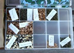 Photo of seed container