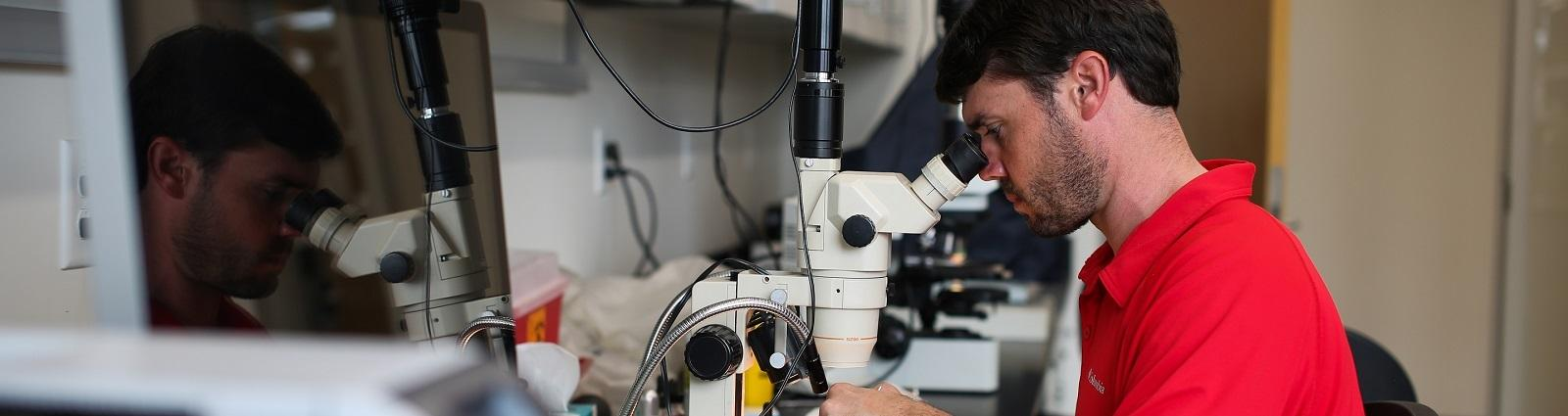 Photo of Ryan Hodgson using a microscope to perform research