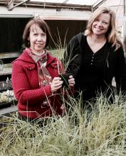 Carol Robacker and Melanie Harrison with bluestem grasses